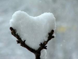 snowheart